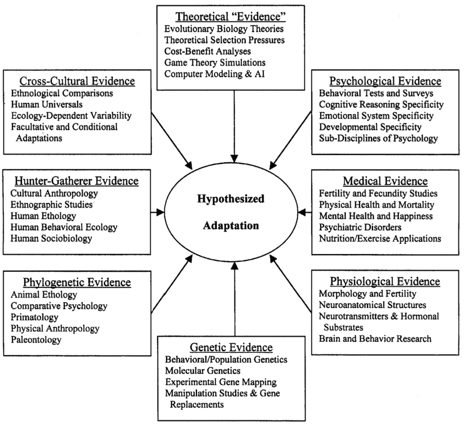 Schematic representation of the different forms of evidence used to evaluate the validity of psychological adaptations. AI: artificial intelligence. Figure and caption from Schmitt and Pilcher (2004).